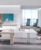 01S_Estel_Executive-&-Common-Area_Executive-&-Meeting_Deck-Meeting-Manager