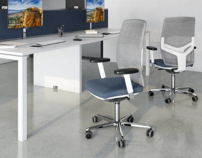 Office Chairs (Executive & Workstation)